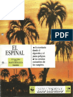11. El Espinal