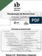 Manip Kernel Linux