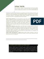 azotea verde 1.docx