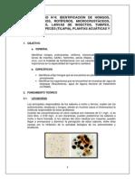 LABO4-MICROBIOLOGIA SANITARIA 2