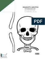 Esqueleto de Tamaño Real
