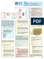 Resumo_BI_Amostra.pdf