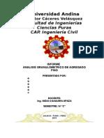 Universidad Andina
