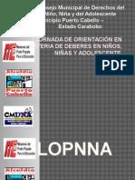 Consejo Municipal de Derechos del Niño, Niña DAMELLYS.pptx