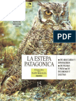 15. La Estepa Patagónica