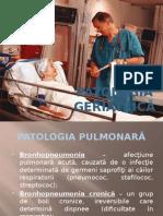 Patolocia geriatrica