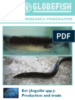 Eel (Anguilla spp.) Production and Trade.pdf
