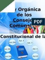 Consejo Comunal Exposicion