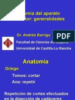 Clase 1 General Ida Des Aparato Locomotor