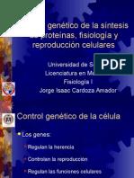 Control Genetico de La Sintesis de Proteinas3