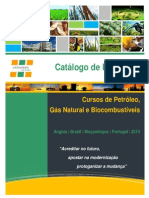 Catalogo 2014 - Oil & Gas