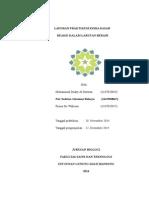 Laporan Praktikum Kimia Dasar Larutan Berair (1)