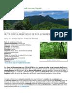 Rutas de Senderismo Asturias Ruta Circular Bosque de Cea ( Parres )