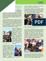 Futuras Promotoras Comunitárias de Veterinária entram na fase de tratamento do gado e respondem às urgências nas comunidades vizinhas a Estação Zootécnica de Chobela