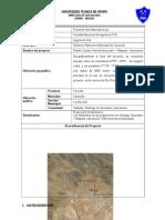 Modelo de Resumen de Proyecto