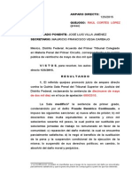 fraude delito federal proceso penal nuevo sistema justicia penal oral