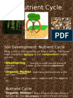 cornell notes nutrient cycle