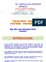 Fisiologia del sist. urinario.ppt
