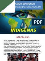 Dados Indígenas