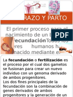 embarazoyparto-121207140601-phpapp02.ppt