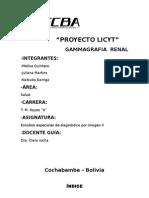 Gamagrafia Renal
