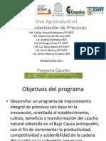 """Pánel """"Mejoramiento de la Productividad para el Desarrollo y Aumento en la Competitividad en la Cadena del Caucho Natural."""