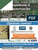 presentacion caracterizacion_Tecnocuero 27-08-2015 (1).pptx