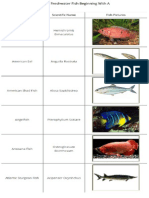 List of Freshwater Fish Beginning With a Letter