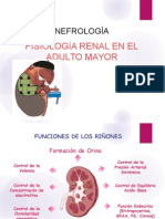 Nefro - Fisiologia Renal