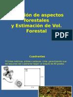 Medición de Aspectos Forestales y Vol Forestal-DIPLO