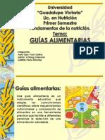 GUIAS ALIMENTARIAS