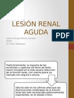Lesión Renal Aguda