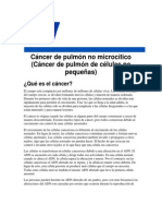 Cancer de Pulmon No Microcitico