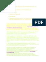 MANUAL E INSTRUCCIONES DE MONICA