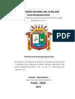 PROYECTO JUAN VIDAL modificado.docx