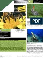 Practica 3 de Word.docx; Imagenes, Formas , Figuras , Cuadros de Texto