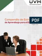 Compendio Estrategias Aprendizaje Estudiantes Región Sur