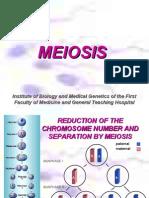 Ameiosis