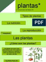 lasplantasadaptada-111020022918-phpapp02