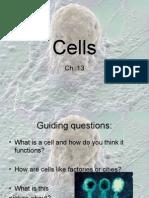 Cells 6th grade