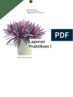 Laporan Praktikum Daun Rhoe discolor-Biologi SMA X