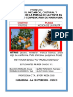 Proyecto Mosca de La Fruta