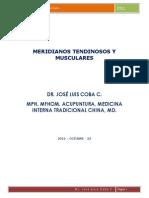 meridianos_tendinosos_muscularesJLC