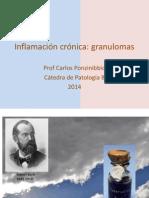 Inf. Crónica Granulomas 2014