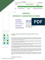 Clases de pinos.pdf