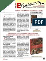 SBENoticias_325