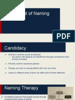 treatment of naming deficits-2
