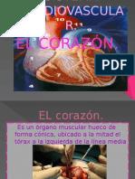 esistema cardio vascular.pptx