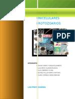 ORGANISMOS-UNICELULARESPROTOZOARIOS.docx