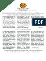 Boletin El Abrazo Nro. 24 del 21.12.2014